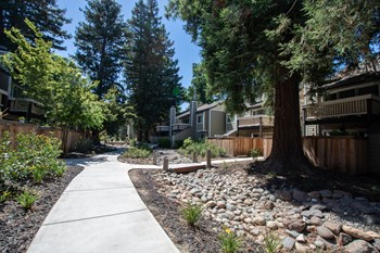 258 Selby Ranch Road 1-3 Beds Apartment for Rent Photo Gallery 1