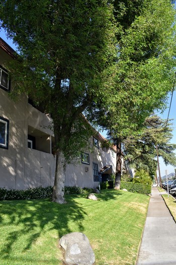 3049 Montrose Avenue 1-3 Beds Apartment for Rent Photo Gallery 1