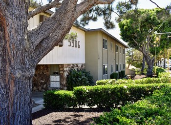 5906 South Pacific Coast Hwy Studio-3 Beds Apartment for Rent Photo Gallery 1