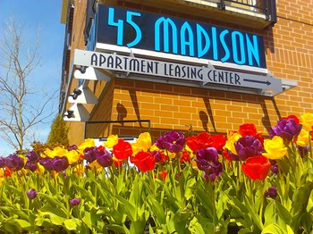 4445 Madison Ave 1-3 Beds Apartment for Rent Photo Gallery 1