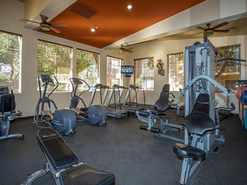 World-Class Fitness Center at Painted Trails, Arizona, 85295