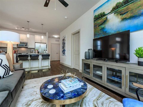 Living Room With Television at Berewick Pointe, Charlotte, NC