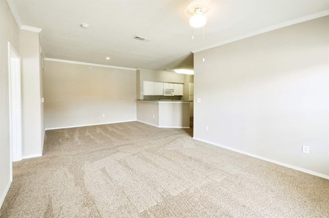 Lush Wall to Wall Carpeting at Stoneleigh on Cartwright Apartments, J Street Property Services, Texas, 75180