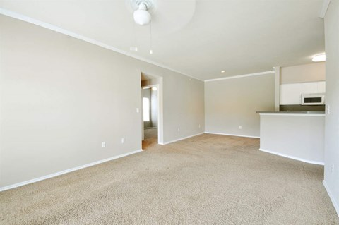 Neutral Carpeting at Stoneleigh on Cartwright Apartments, J Street Property Services, Balch Springs, 75180