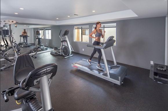 NMS-Northridge-Luxury-Apartment-Interior-Fitness-Center-Model