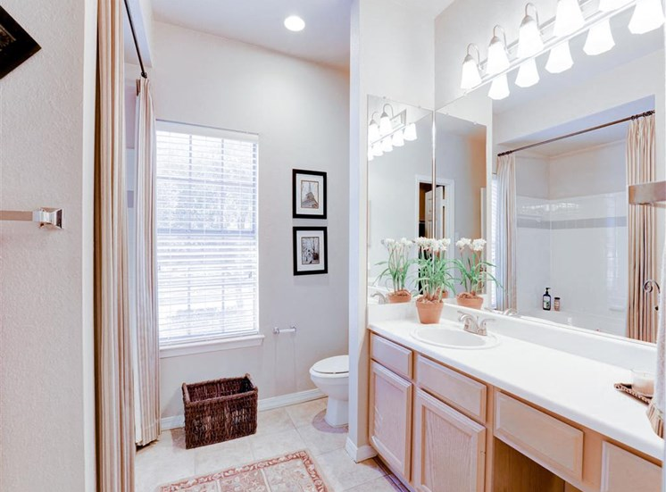 Mirrored vanity at Saddle Brook Apartments in North Dallas, TX, For Rent. Now Leasing 1, 2 and 3  bedroom apartments.