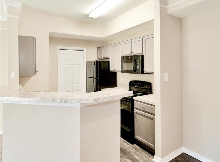 Microwave, dishwasher, disposal and ice maker in every kitchen of Saxony at Chase Oaks in North Plano, TX, For Rent. Now leasing 1, 2 and 3 bedroom apartments.