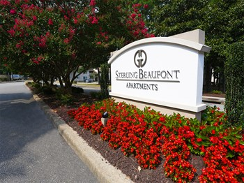 6839 Carnation Street 1-3 Beds Apartment for Rent Photo Gallery 1