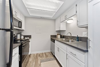 439 W El Norte Parkway, Ste 102 Studio-2 Beds Apartment for Rent Photo Gallery 1