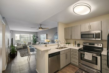 555 Pine Avenue Studio-2 Beds Apartment for Rent Photo Gallery 1