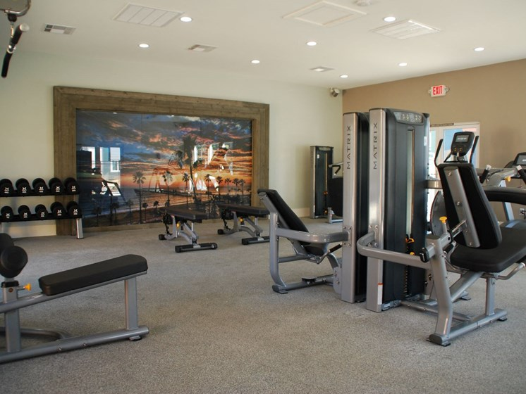 Re-Imagined Fitness Center  at Stonewood Gardens Apartment Homes, 3889 Midway Drive
