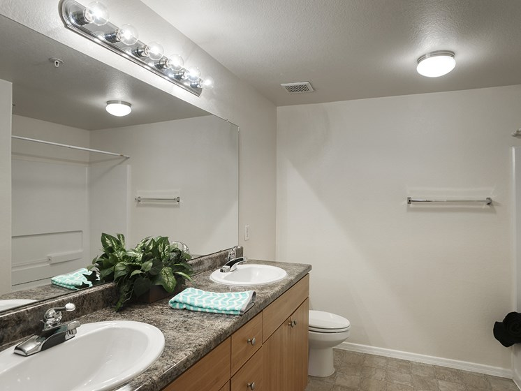 Master Bath Mirror at Ascent at Papago Park, Arizona, 85008