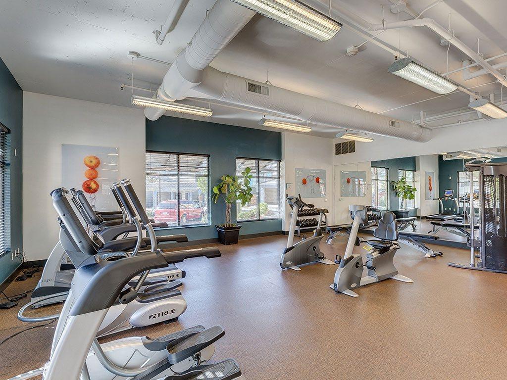 Modern Fitness Center at Domaine at Villebois Apartment Homes, Wilsonville, OR, 97070