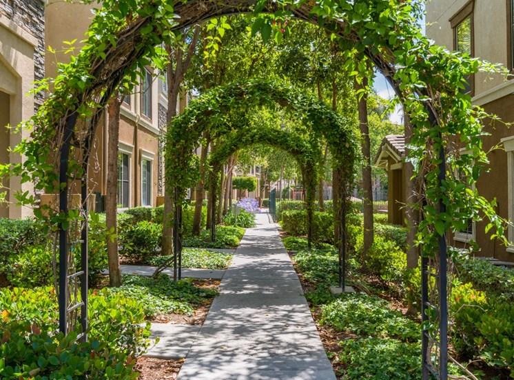 Lush Green Courtyard With Walking Paths at Terra Vista, Chula Vista