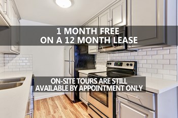 9520 Lucerne Ave 1 Bed Apartment for Rent Photo Gallery 1