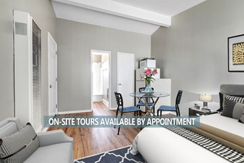 233-237 4Th Ave Studio Apartment for Rent Photo Gallery 1
