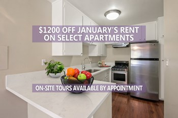 20440 Anza Avenue 1 Bed Apartment for Rent Photo Gallery 1