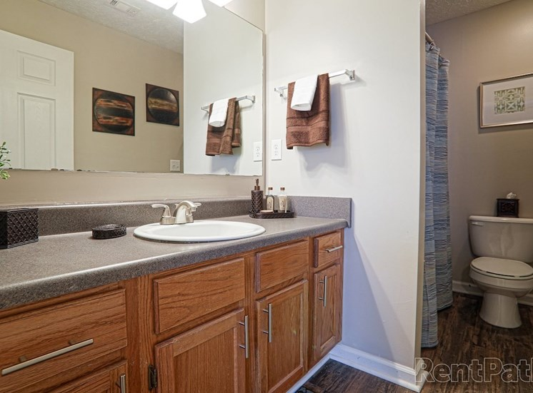 bathroom with large vanity and mirror and above vanity lighting at The Point at Fairview Apartments, Prattville, Alabama