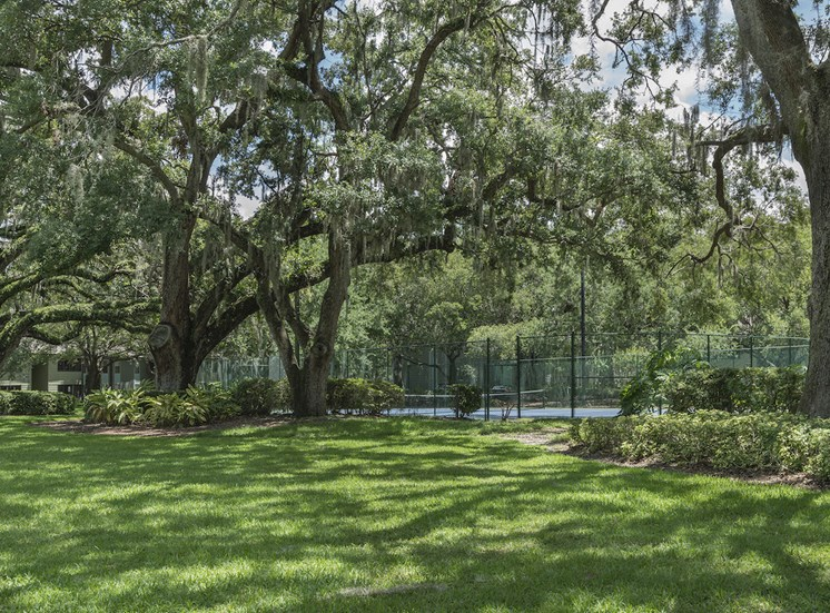 Fenced tennis court with surrounded by large oak trees at The Retreat at Lakeland Apartments, Florida, 33809