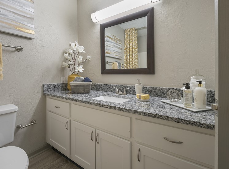 bathroom with large granite sink vanity, mirror, toilet, and cabinetry