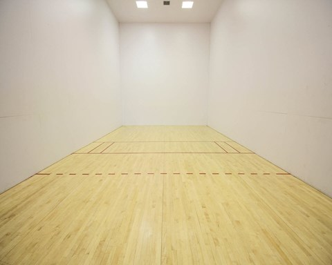 New River Cove Apartments | Indoor Racquetball Court