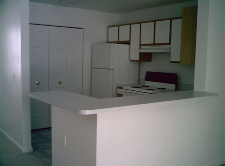 Fully Equipped Kitchen With Modern Appliances at Cascade Apartments, Holland