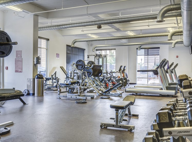 Fitness center with free weights, squat machine, and large windows that bring in natural sunlight