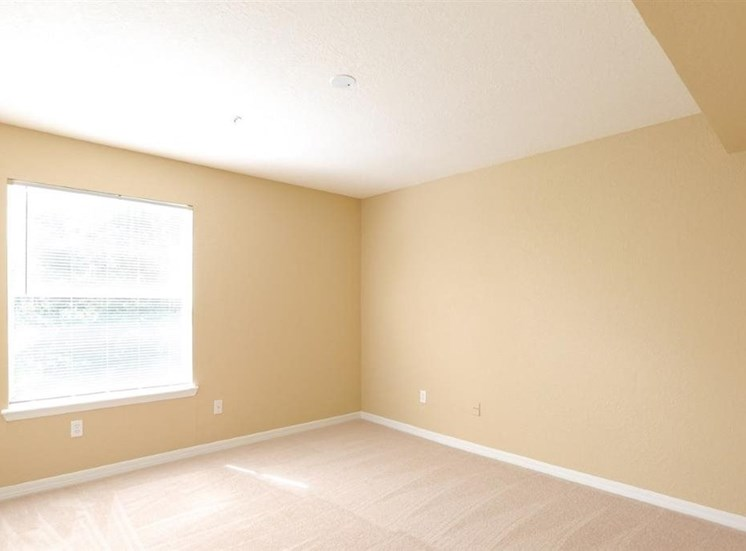 Carpeted Bright Open Bedroom with Window