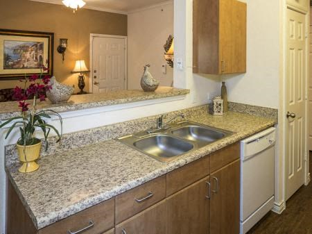 Kitchen with double basin sink, wooden cabinets above and below, and a white dishwasher located to the right of the sink