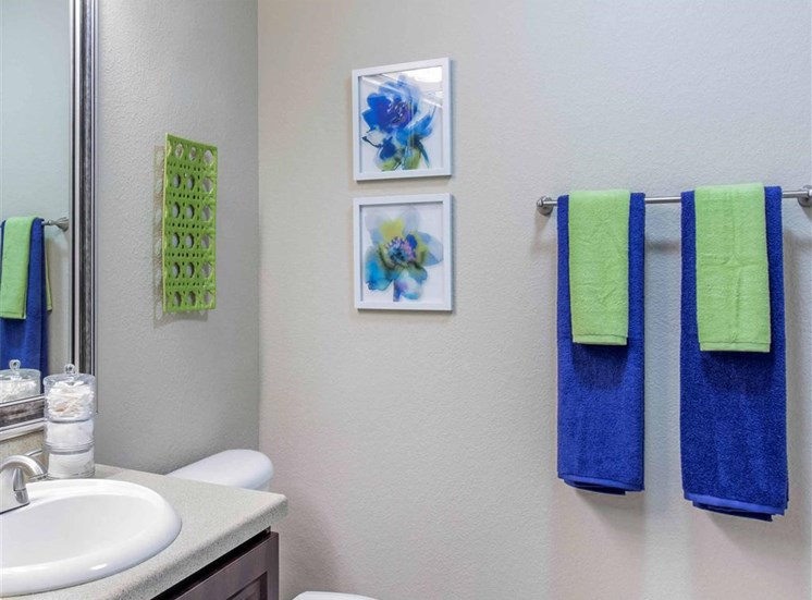 The Village at Legacy Ridge Apartments | Bathroom