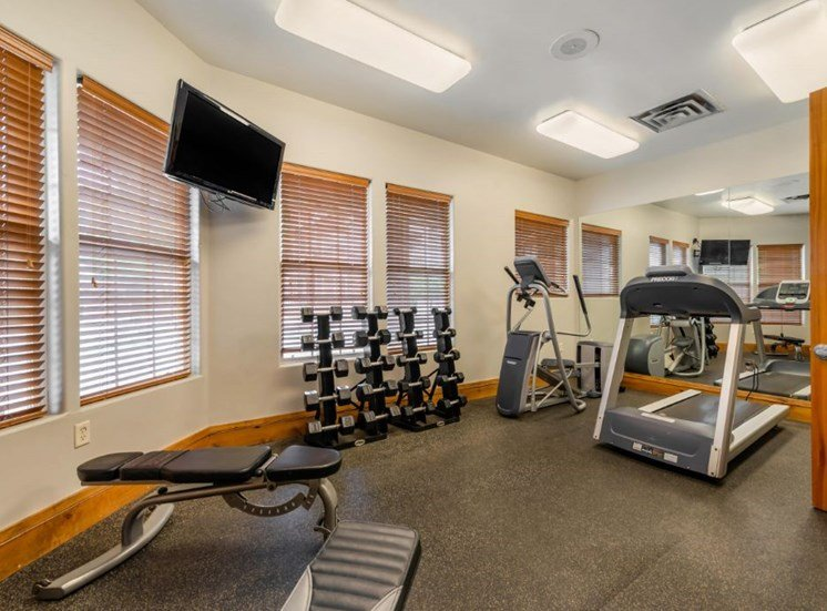 Fitness center with strength and conditioning equipment and large windows for natural lighting