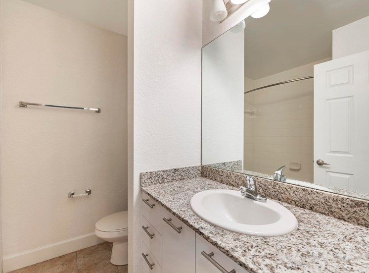 Bathroom with vanity lighting, large mirror, and hardwood style flooring