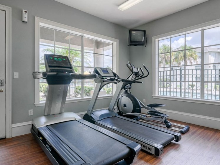 Bright Cardio and Fitness Center with Large Windows
