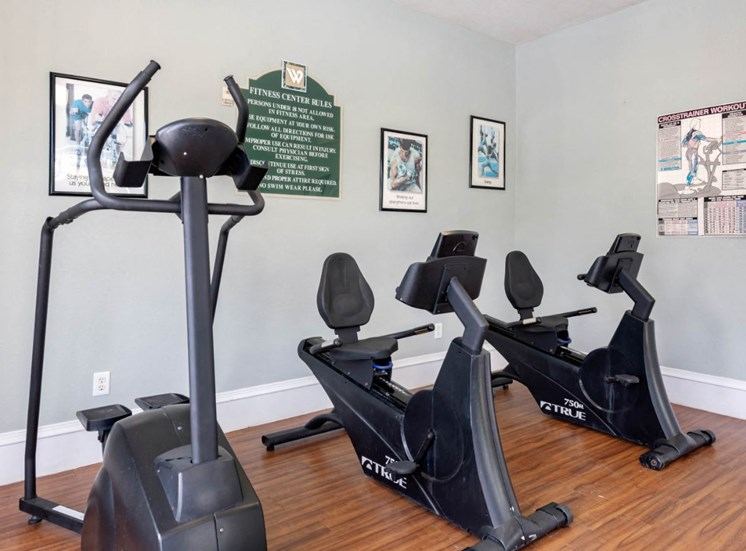 Bright Cardio and Fitness Center with Posters on the Wall