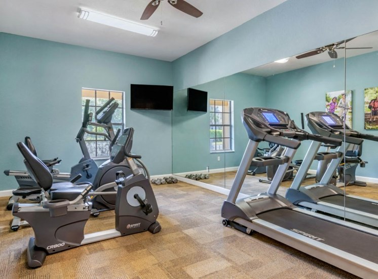 Fitness and Cardio Center Mounted TV Mirror Accent Wall and Window