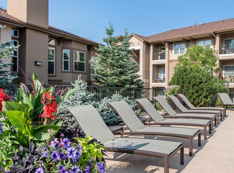 Talon Hill Apartments | Pool Loungers