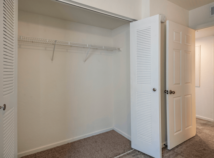 Spacious closet with carpet flooring