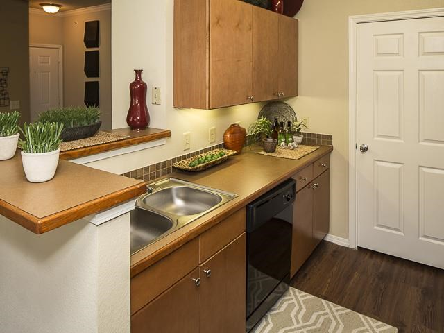Kitchen with Double Basin Sink Brown Counters Wood Cabinets and Decorations