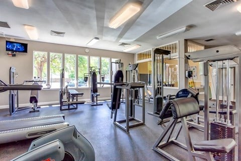 Fitness Center Weight Training Equipment