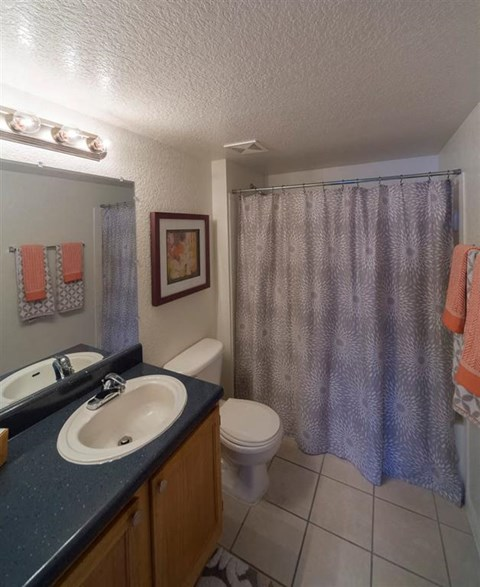 Decorated Bathroom with Blue Counters and Wood Cabinets