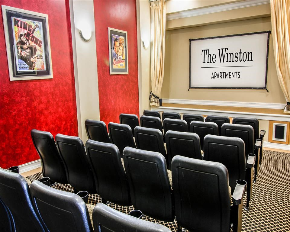 The Winston Apartments   Theater Room