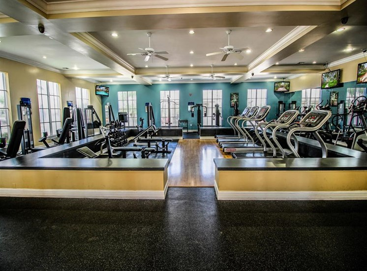 The Winston Apartments | Strength and Cardio Fitness Center