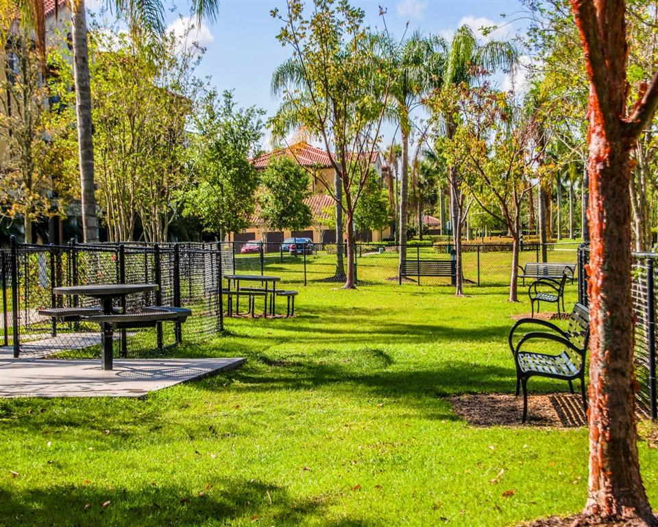 Park with Picnic Areas  at Park Aire Apartments
