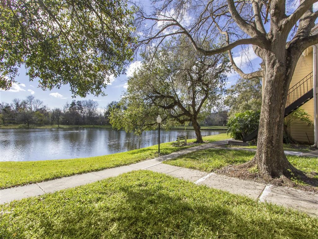Walking Trail Around Body of Water with Trees Shading Areas