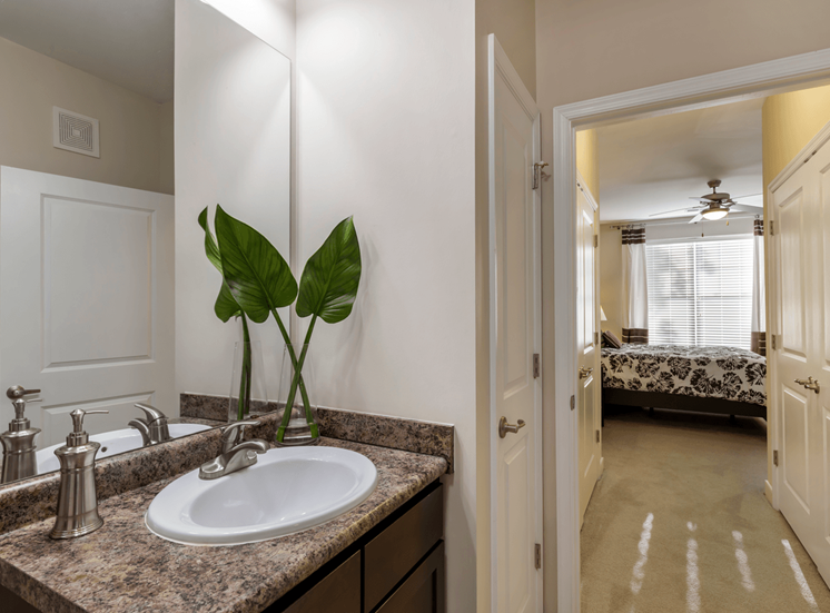 En Suite Bathroom with Brown Counters and Cabinets with Plant on Counter