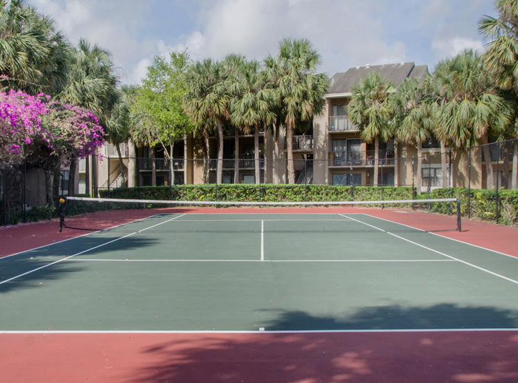Tennis court with tree and building exteriors