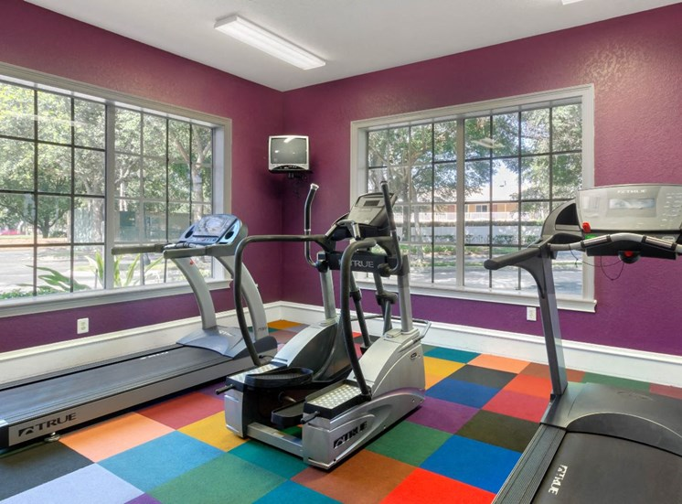 Purple Fitness Center with Large Windows and Colorful Flooring