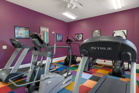 Purple Fitness Center with Exercise Equipment and Colorful Flooring