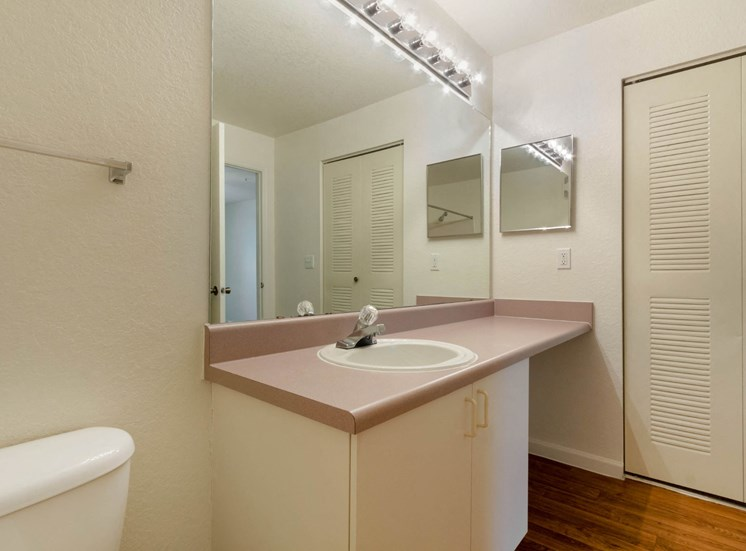 Bathroom with Mauve Counter with White Cabinets Medicine Cabinet and Sliding Door Closet