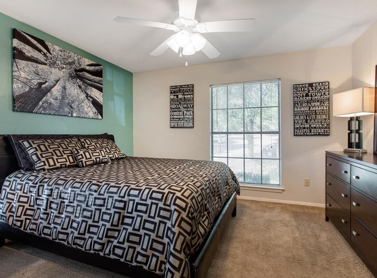 Bedroom interior with a teal accent wall, gray bedding, large windows, wall to wall carpet, and a wooden nightstand